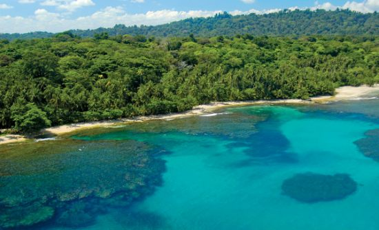 Best Off Beach Snorkeling In Costa Rica