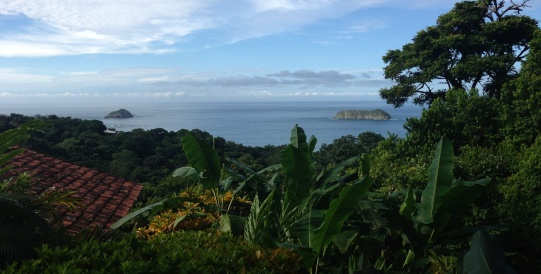 Things to Do in Manuel Antonio National Park