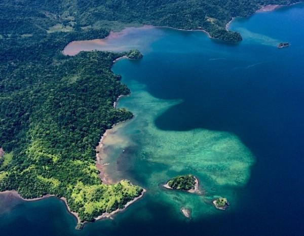 Osa Peninsula Rainforest Travel Guide | Costa Rica Experts
