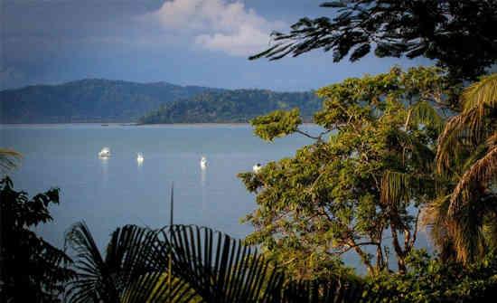 Osa Peninsula Costa Rica