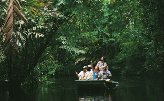 Top Things to do at Tortuguero National Park