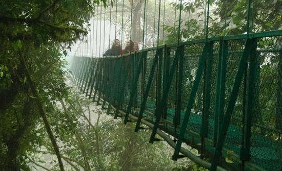 Arenal-Volcano-Hanging-Bridges-Tour