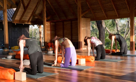 Stay at Bodhi Tree Yoga Resort, Costa Rica
