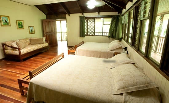 Stay at Selva Verde Lodge, Costa Rica